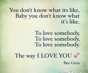 bee gees, song, and text image
