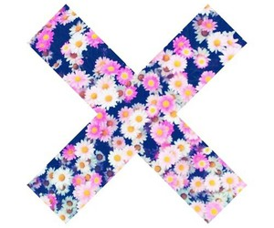 flowers, x, and theme divider image