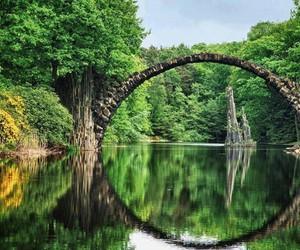 amazing, nature, and bridge image