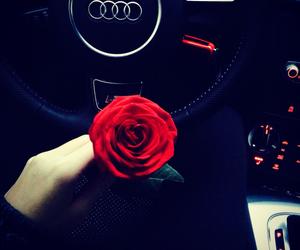 rose, audi, and car image