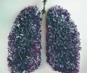 flowers, lungs, and red image
