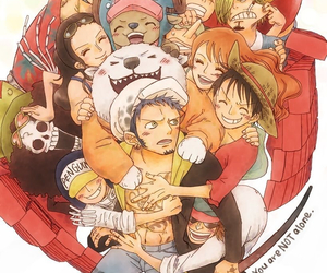 one piece, Law, and sanji image