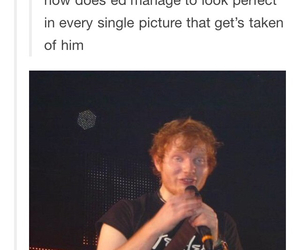 ed sheeran, funny, and tumblr image