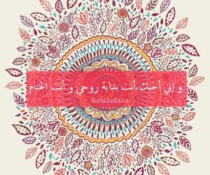 arabic, عربي, and شعر image