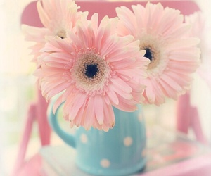 pink, flowers, and book image
