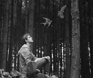 black and white, birds, and boy image