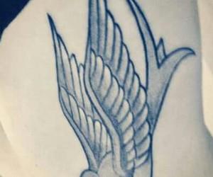 bird, golondrina, and fly image