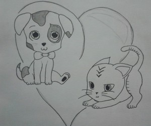animal, cats, and dessin image