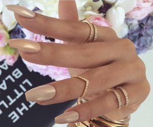 bracelets, flowers, and rings image