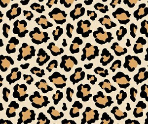 background, wallpaper, and leopard image