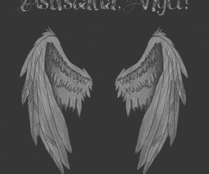 wings, hush hush, and patch cipriano image