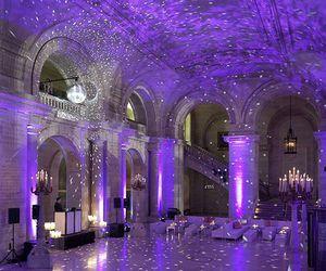 purple and light image