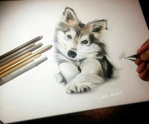 art, dog, and draw image