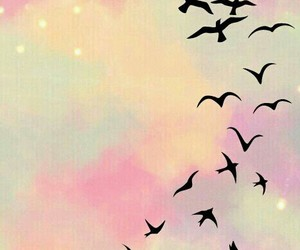 birds, freedom, and colors image