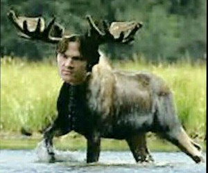 funny, sam winchester, and supernatural image