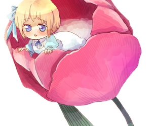flower, hetalia, and girl image