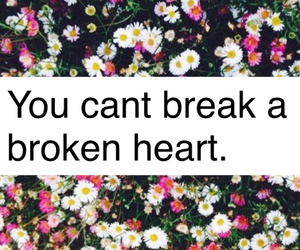 broken heart, flowers, and daisies image