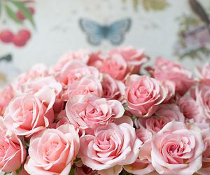 roses, beautiful, and flores image