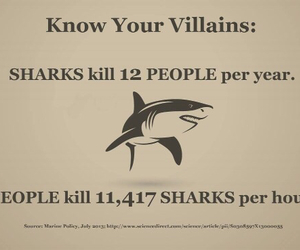 shark, people, and quotes image