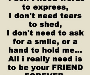 friendship, quotes, and words image