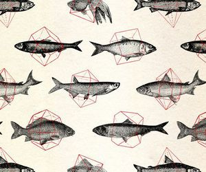 fish, art, and vintage image