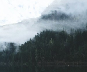 nature, indie, and grunge image
