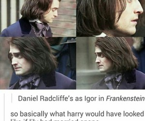 daniel radcliffe, harry potter, and lily potter image