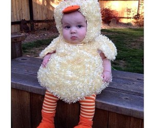 baby, Chicken, and cute image