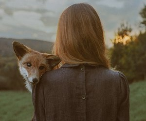 fox, girl, and nature image