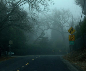 fog, nature, and road image