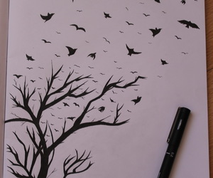 art, birds, and black and white image