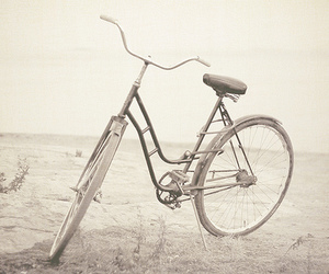 bicycle and pretty image