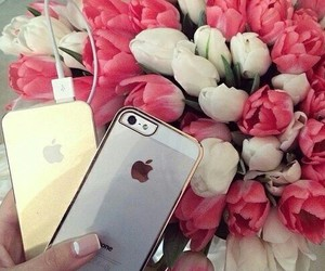 fashion, flowers, and iphone image