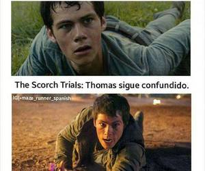 books, the scorch trials, and maze runner image