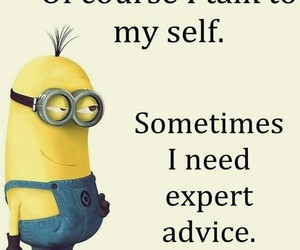 minions, funny, and advice image