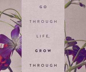 life, quote, and grow image