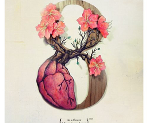 8, flowers, and heart image