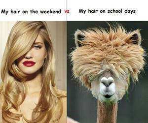 hair, school, and blonde image