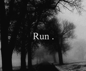 pic, run, and words image