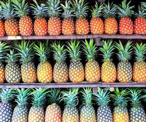 fruit, healthy, and pineapple image