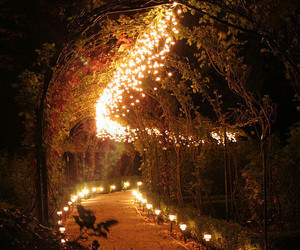 awesome, pretty, and ligths image