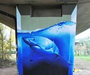 shark, art, and graffiti image