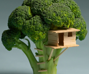 broccoli, house, and tree image