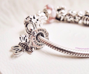 bracelet, butterfly, and charms image