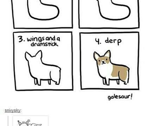 dog, corgi, and funny image