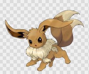 eevee, pokemon, and mega evolution image