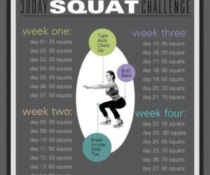 challenge, month, and squats image