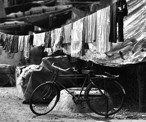 bicycle, jack halfon, and black and white image
