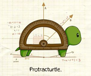 turtle and math image