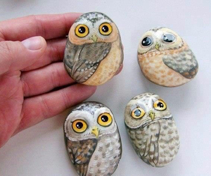 owl and stones image